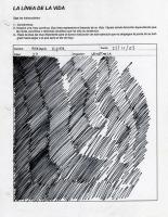 37_linea-adriana-riquer-web.jpg