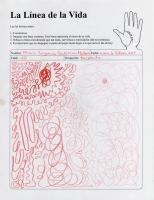37_linea-maria-eugenia-guzman-web_v3.jpg