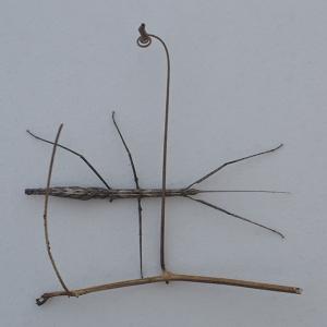 http://balambartolome.com/files/gimgs/th-94_94_pictograma-con-palo-e-insecto-palo-copy.jpg